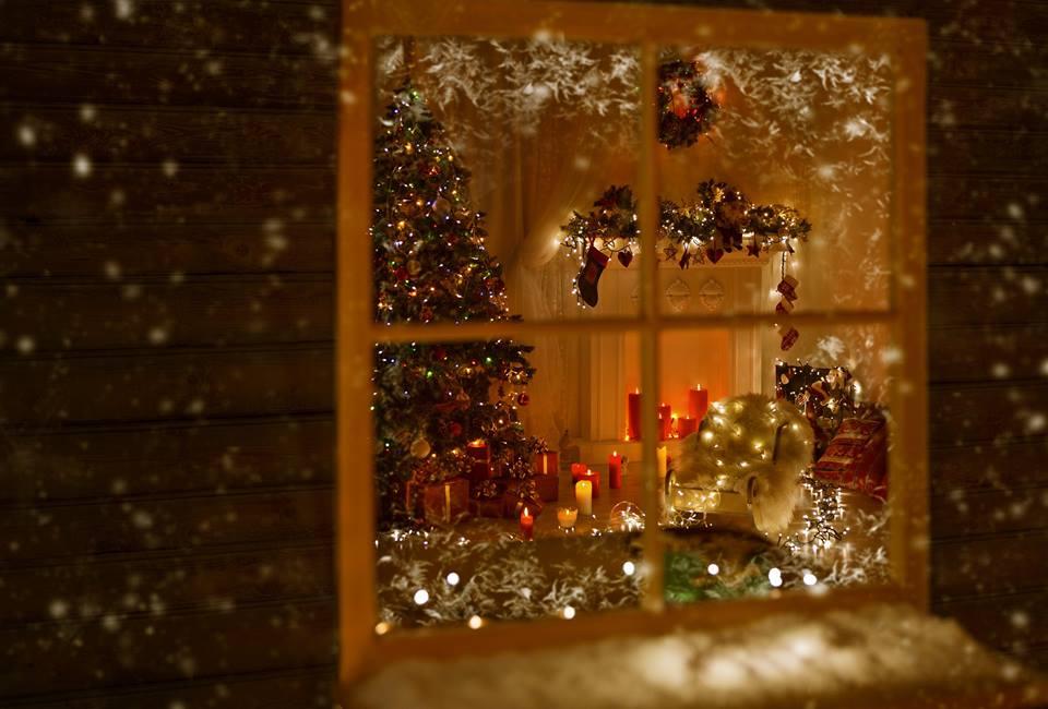 TT_Christmas looking through window.jpg
